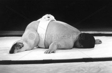 1964-Sumoringer macht Gymnastik