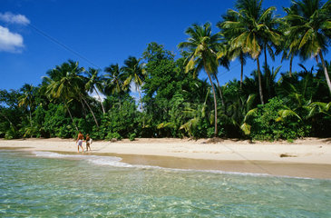 Traumstrand auf Martinique