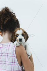 Girl holding beagle puppy  rear view