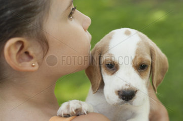 Girl carrying beagle puppy  close-up