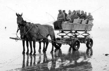 Zwei Pferde mit Wagen
