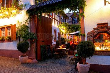 Suedliche Weinstrasse  Rhodt unter Riedburg