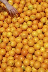 Frauenhand greift in grosse Apfelsinenkiste