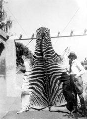 Dame mit Zebrafell