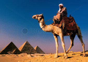 Aegypten: Dromedarreiter vor den Pyramiden von Gizeh