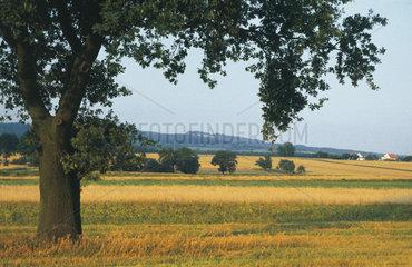 Polen - Schlesien: St. Annaberg