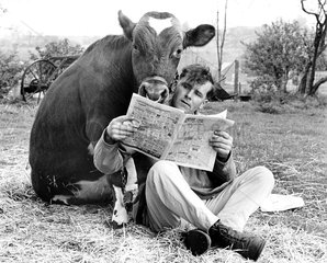 Auch eine Kuh will ihre Info