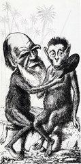 Charles Darwin ( 1809 - 1882 )  Karikatur