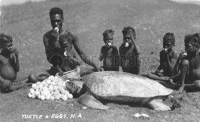 Kinder klauen Eier von Meeresschildkroete