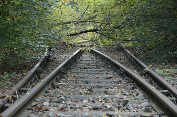 unbefahrbare Bahngleise enden im Dickicht