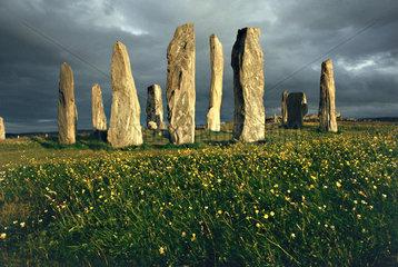 Schottland: Isle of Lewis  Steinkreis von Calanish