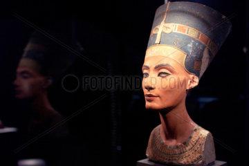 Der Kopf der Nofretete im Aegyptischen Museum.