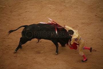 Stierkampf in Arena auf dem Jakobsweg - Camino de Santiago