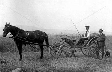 Zwei Maenner mit Pferdekutsche