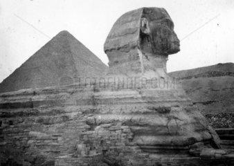 Die Grosse Sphinx von Gizeh - im Hintergrund die Pyramide des Cheops