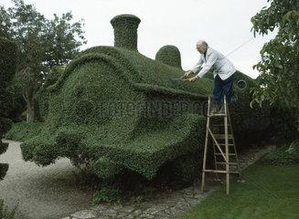 Gaertner schneidet Zug aus Pflanze
