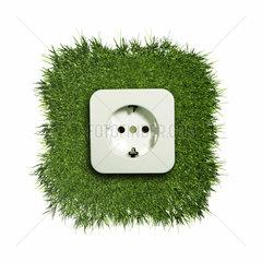 Steckdose waechst auf einem gruenen Rasenstueck