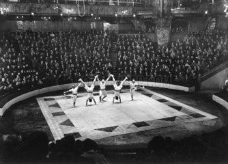 fuenf Akrobaten im Zirkus
