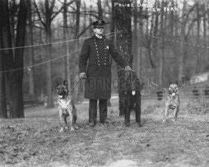 New Yok  Polizis mit drei Hunden