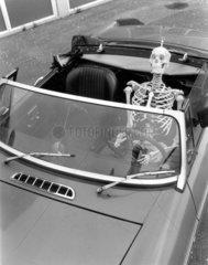 Skelett faehrt Auto