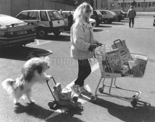Hund schiebt Einkaufswagen