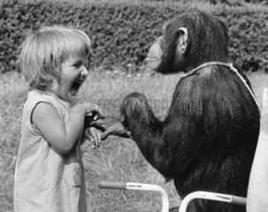 Maedchen und Schimpanse im Profil