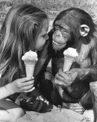 Schimpansen und Maedchen lutschen Eis