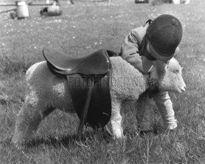 Kind will auf Schaf reiten