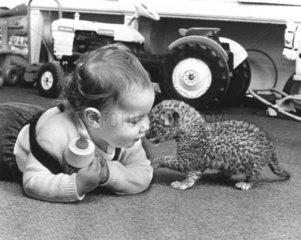 Loewenbaby + Menschenkind