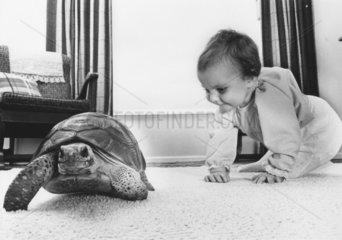 Kind + Schildkroete im Wohnzimmer