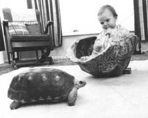 Kind in Schildkroetenpanzer