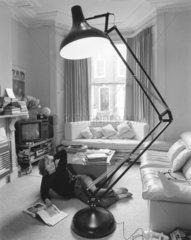 grosse Zimmerlampe