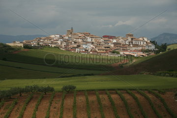 Stadt am Jakobsweg - Camino de Santiago