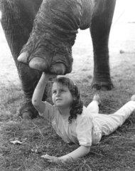 Maedchen unter Elefantenbein