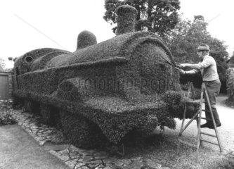 Mann schneidet Zug aus Hecke