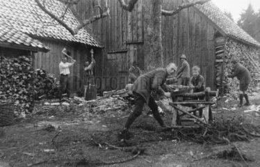 Maenner beim Holz hacken