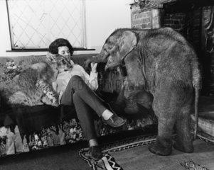 Frau mit Loewen und jungem Elefanten auf dem Sofa