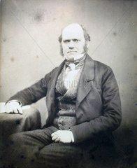 Charles Darwin ( 1809 - 1882 )  Portraet