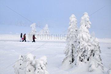 Menschen laufen im Schnee