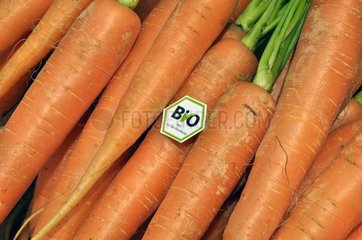 Karotte mit Bio-Siegel