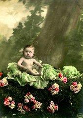 Baby sitzt auf Kohl  1910