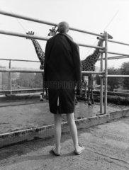 Uebergrosses Kind schaut auf Giraffen