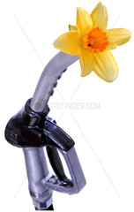Zapfpistole  Blume  Symbol  niedrige Benzinpreise