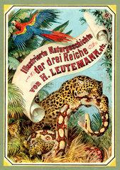 Buch Naturgeschichte  um 1899
