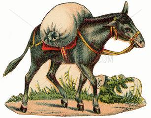 Lastesel  Illustration  um 1870