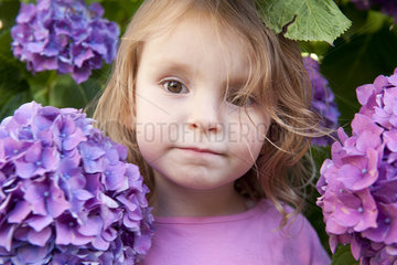 Little girl surrounded by hydrangea flowers  portrait