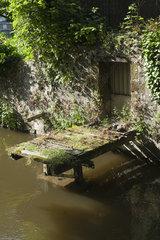 Overgrown dock