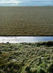 Auf der Niederelbe und Helgoland