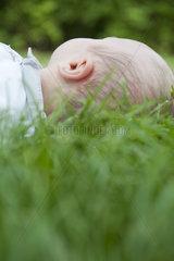 Baby lying in grass