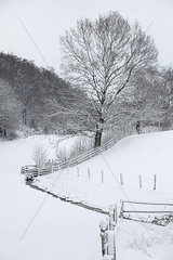 Winterlandschaft in Nordhessen an der B252